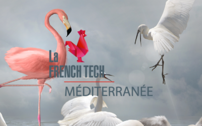 Artefakt Vision rejoint French Tech